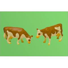 Model kravy 2 kusy
