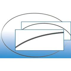Pílový pás pre pásovú pílu GBS 200 Profi (83810)
