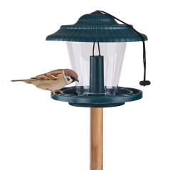DEMA Kŕmidlo pre vtáky plast 19,5x18 cm Hansi